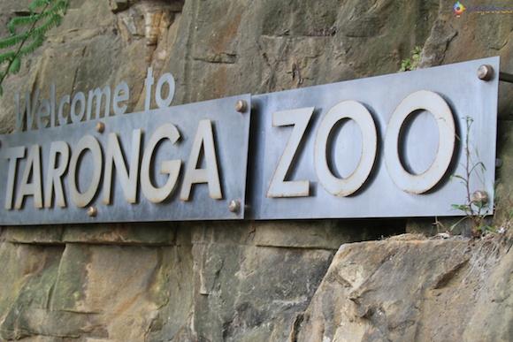 Taronga Zoo - Zoologico de Sydney