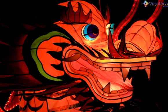 Ano Novo Chinês em Auckland - Dragão