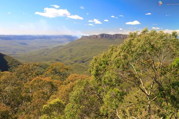 Eucaliptos na Blue Mountains Austrália