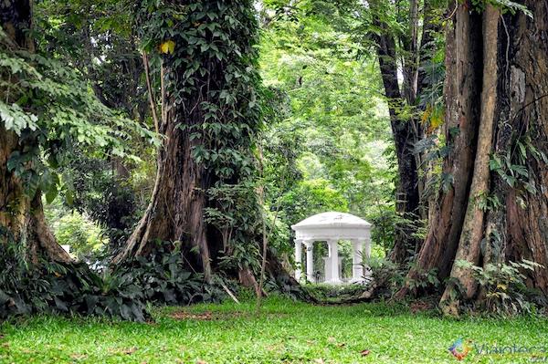 Jardim Botânico de Bogor na Indonésia