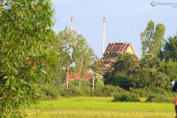 Cambodia Quad Bike (11)
