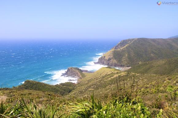 Cape Reinga Nova Zelândia 15