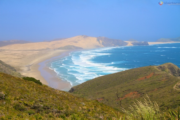 Cape Reinga Nova Zelândia 17