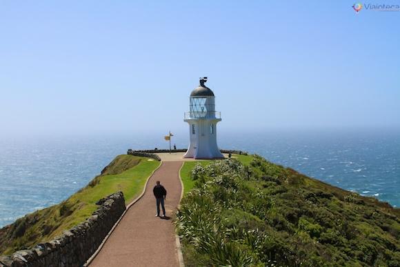 Cape Reinga Nova Zelândia 25