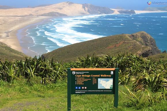 Cape Reinga Nova Zelândia 33