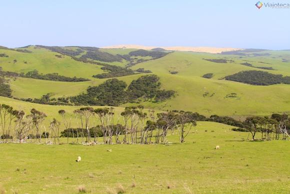 Cape Reinga Nova Zelândia 46