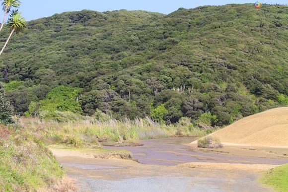 Cape Reinga Nova Zelândia 50