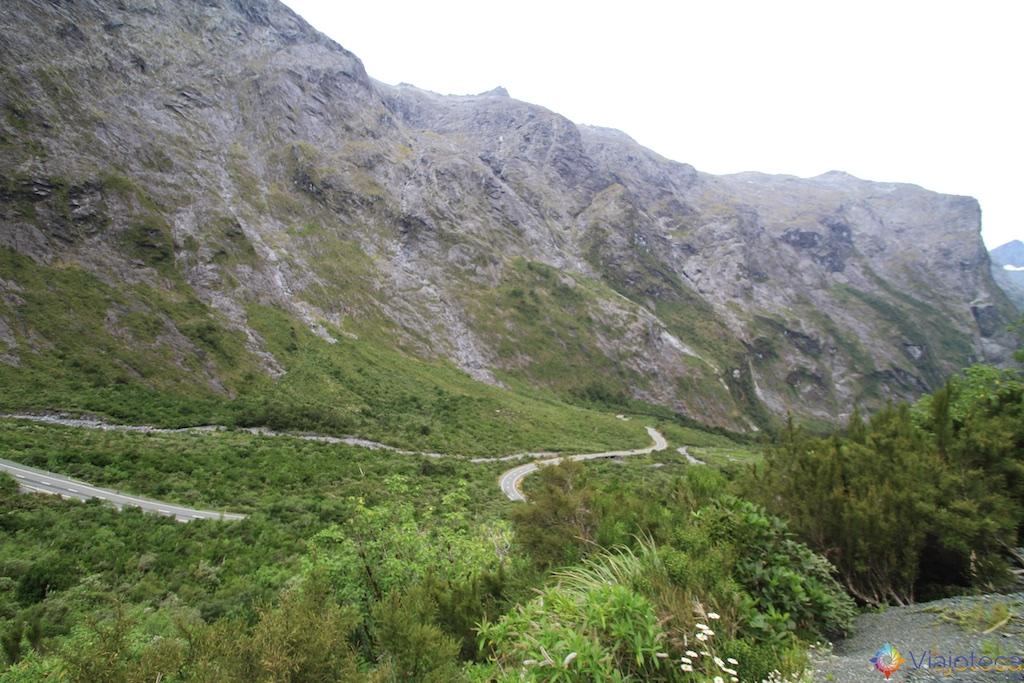 Estrada para o Milford Sound na Nova Zelândia 115