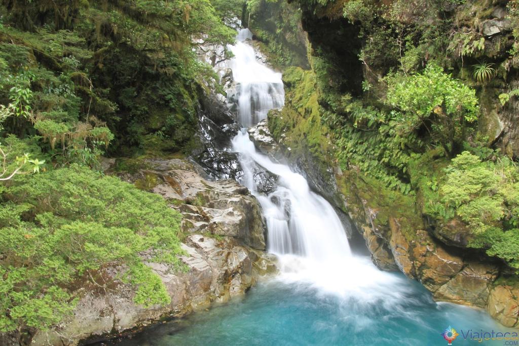 Monkey Creek