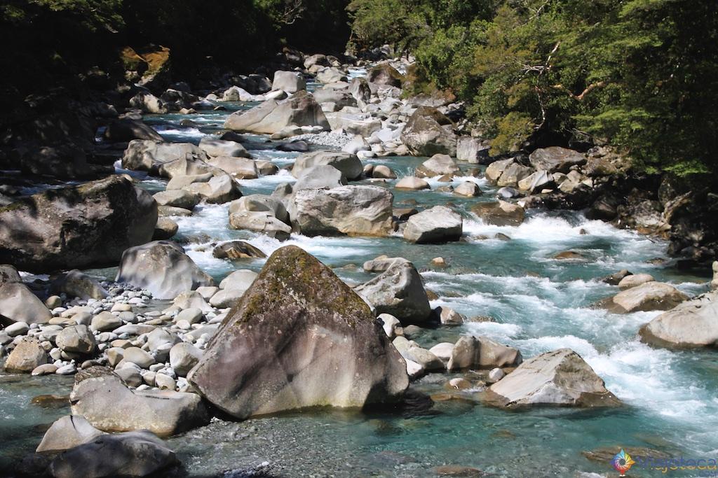 Estrada para o Milford Sound na Nova Zelândia 129