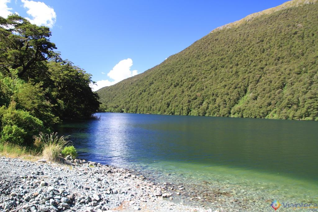 Estrada para o Milford Sound na Nova Zelândia