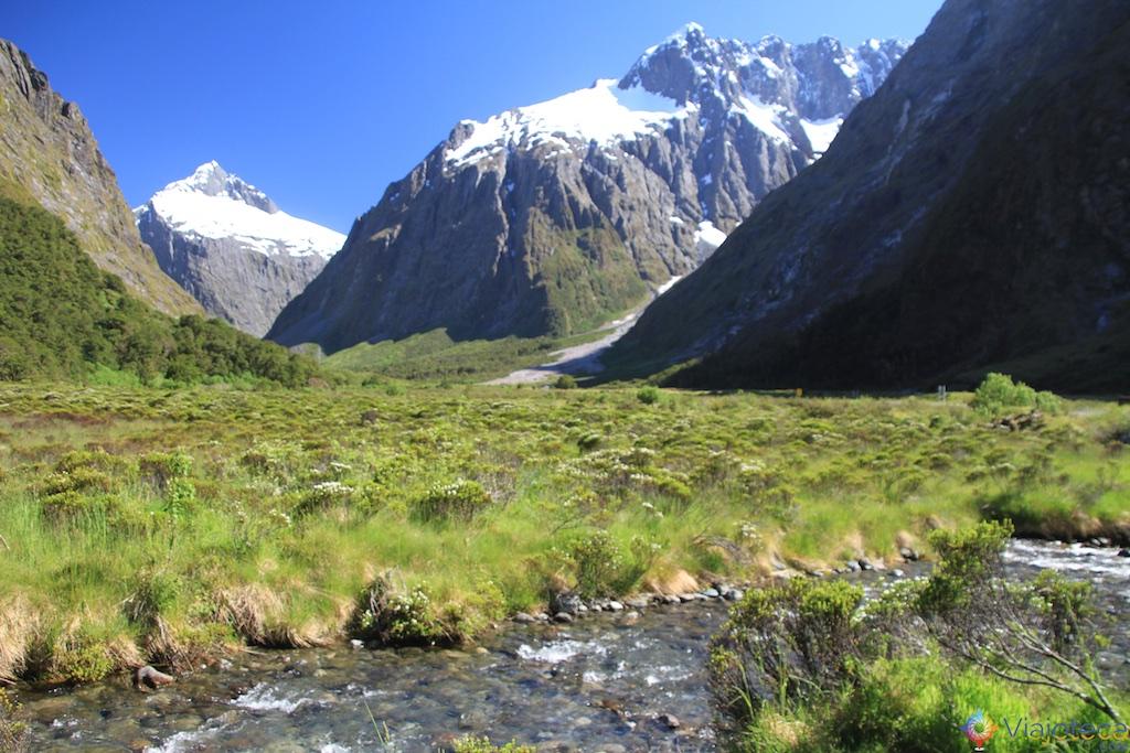 Estrada para o Milford Sound na Nova Zelândia 67