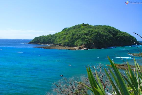 Goat Island o melhor snorkel e mergulho em Auckland