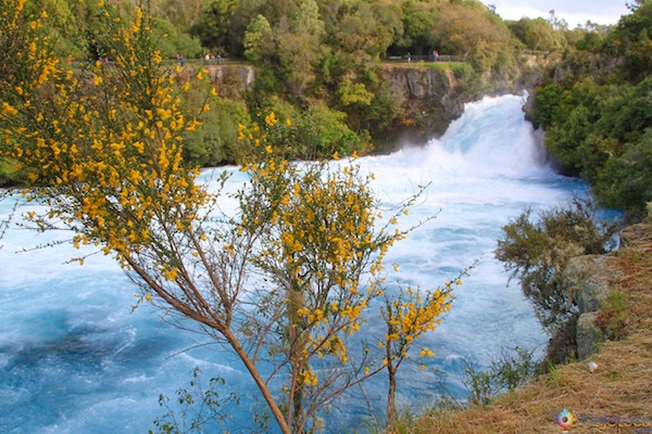 Huka Falls - Cachoeira Nova Zelândia 33