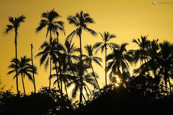 Ilhas Cook22