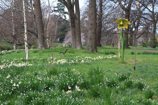 Jardim Botânico de Christchurch na Nova Zelândia (17)