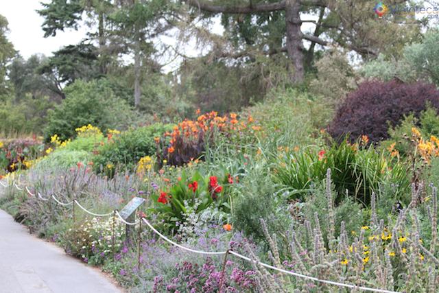 Jardim Botânico de Christchurch na Nova Zelândia (23)