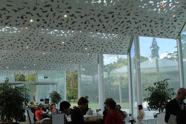 Jardim Botânico de Christchurch na Nova Zelândia (30)