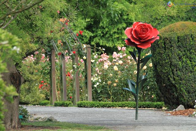 Jardim Botânico de Christchurch na Nova Zelândia (31)