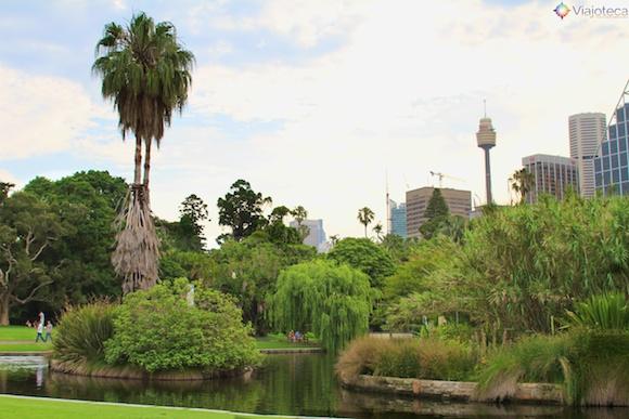 Jardim Botânico de Sydney38