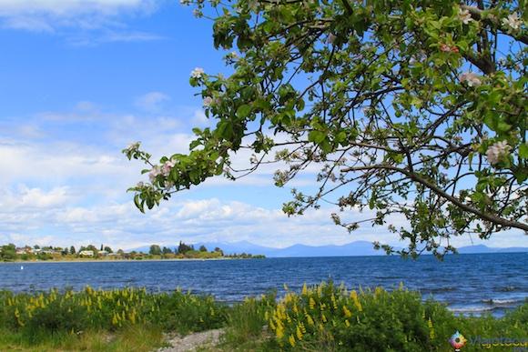 Lake Taupo Nova Zelândia 17
