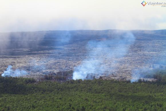 Lava do Kilauea consumindo floresta