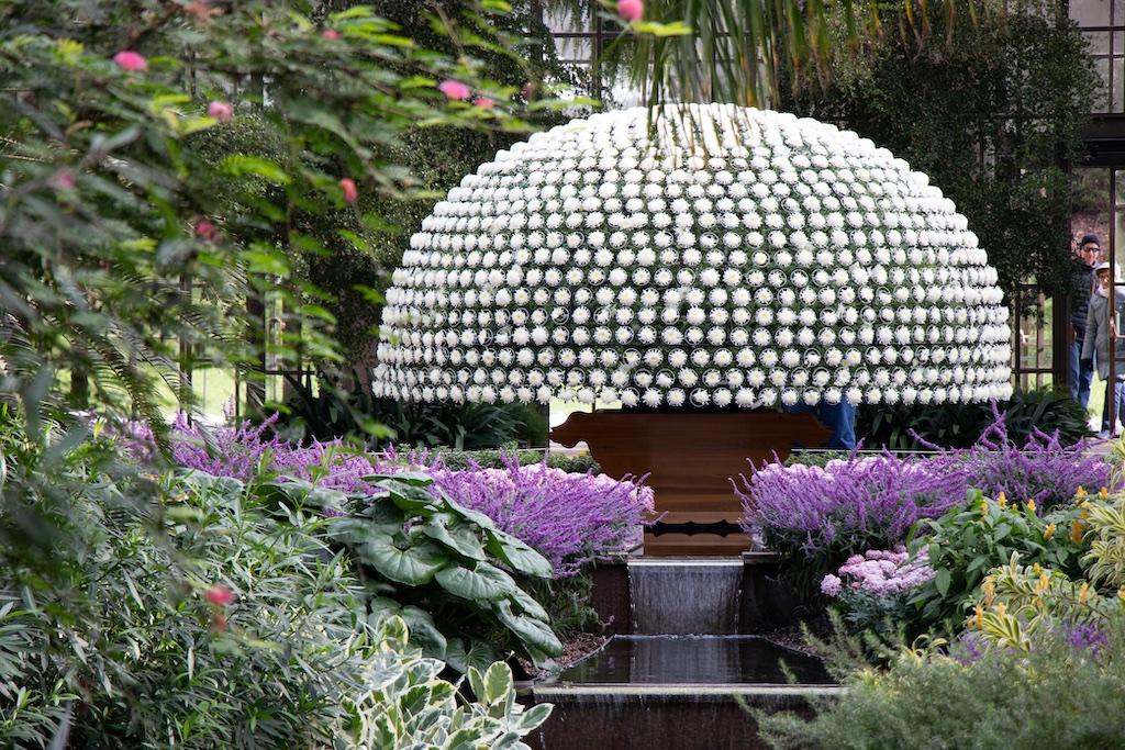 Ozukuri Festival dos Crisântemos no Longwood Gardens