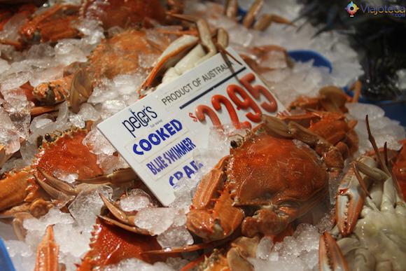 Mercado Peixe de Sydney (2)