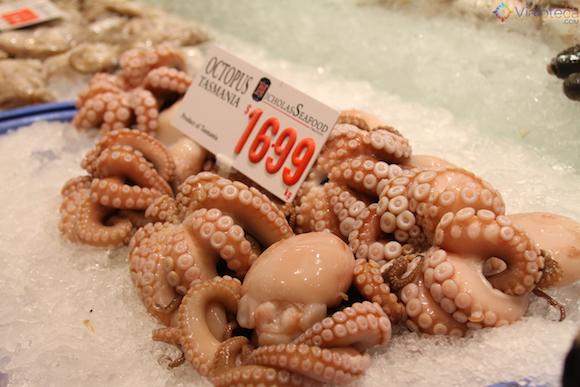 Mercado Peixe de Sydney (8)