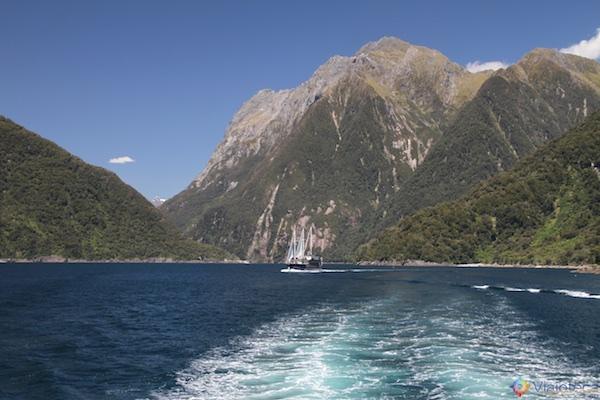 Milford Sound o mais famoso fiorde da Nova Zelândia 108