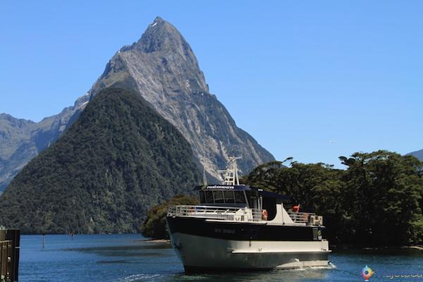 Milford Sound o mais famoso fiorde da Nova Zelândia 80