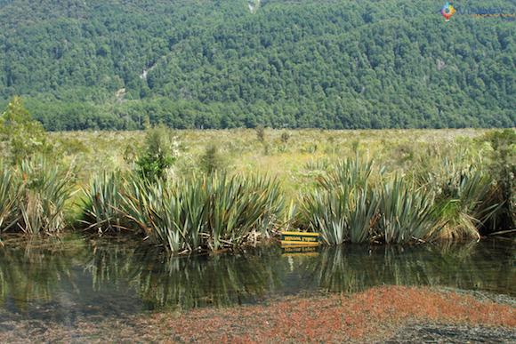 Mirror Lake entre Te Anau e Milford Sound
