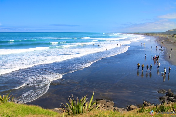 Muriwai Beach e Gansos Patola em Auckland 001