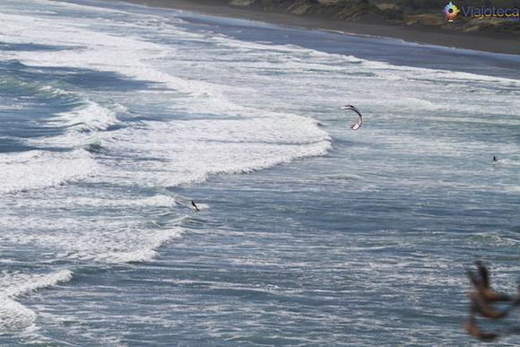 Muriwai Beach em Auckland (31)
