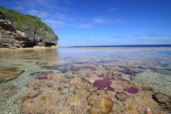 Niue Recife de Coral