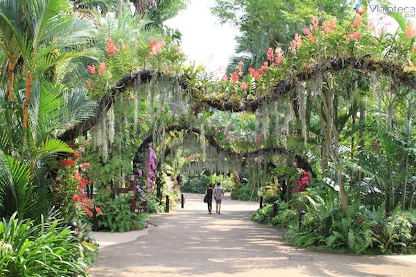 Parque das Aves Singapura - Jurong Bird Park