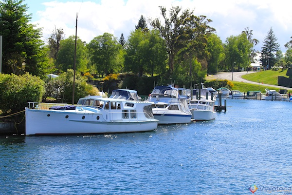 Passeio de Barco pelo Lake Taupo 7