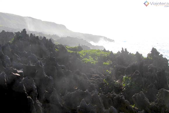 Pinacles em Niue