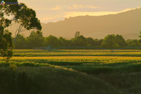 Por do Sol em Matamata (1)