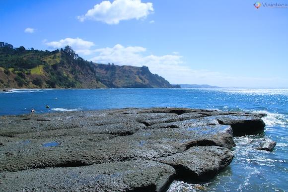 Praia em frente a Goat Island o melhor snorkel e mergulho em Auckland