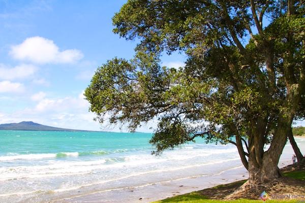 Praia no North Shore de Auckland
