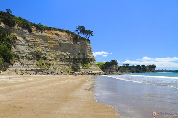 Praias North Shore Auckland - Long Bay 11