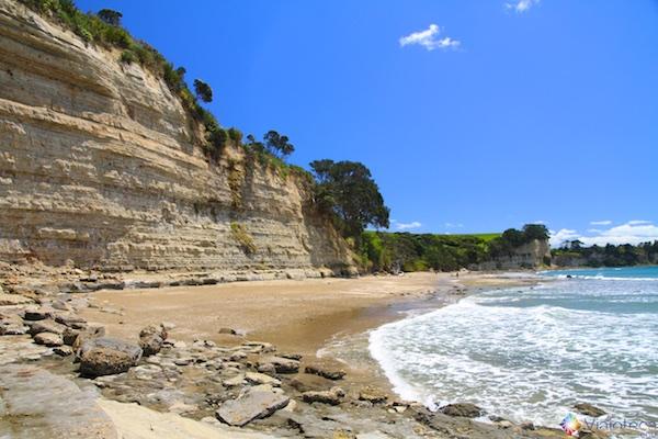 Praias North Shore Auckland