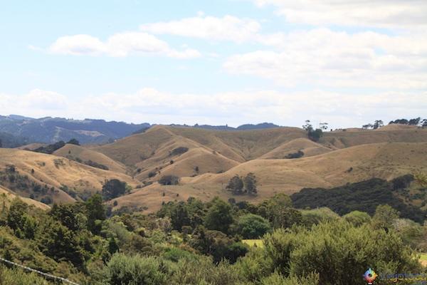 Puhoi Valley Turismo Rural Nova Zelândia 11