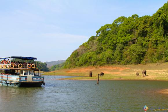Safari na India - Lago Peryiar (18)