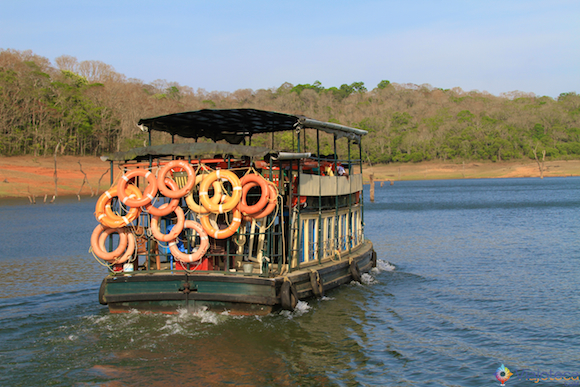 Safari na India - Lago Peryiar (41)