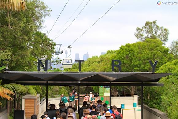Teleférico Taronga Zoo - Zoologico de Sydney