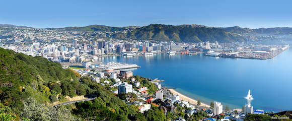 36783TC00: Wellington City and Harbour from Mount Victoria with fountain playing at Oriental Bay, on a still autumn morning. Panorama. Wellington, Wellington City Dist., NZ