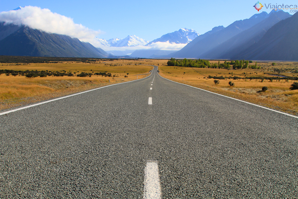 Viagem Nova Zelândia (13)