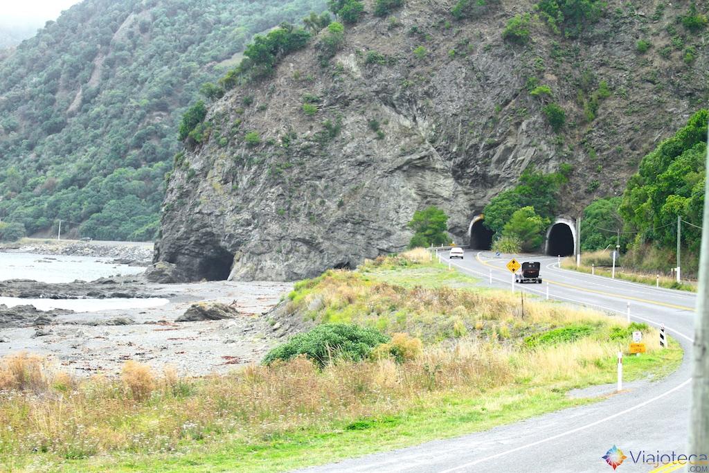 Viagem Trem Nova Zelândia - Coastal Pacific 113